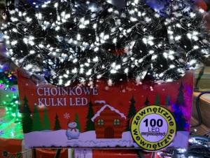 Lampki led Flash ( 100 Led  ) TP234
