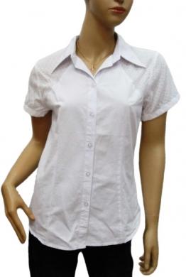 Koszule Damskie krótki rękaw ( 36-44 ) PRM 91