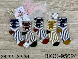 Skarpety chłopięce bawełna (28-36) NL4151